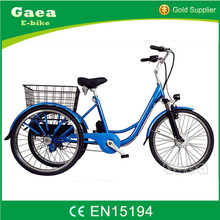 China changzhou 900W/1000W three wheel adult electric cargo tricycle motorcycle for sale