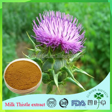 natural ingredients silybin holy thorn thistle extract for medcine