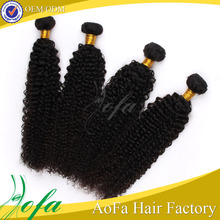 Aofa Wholesale Indian Unprocessed Kinky Curly Remy Virgin Full Lace Human Hair Wig for Black Women