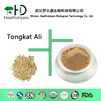 100% True Super Quality Eurycoma Longifolia Jack Extract /Tongkat Ali Powder 20:1