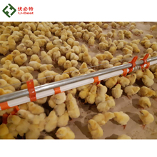 Fully equipped control shed poultry farming cost for all the equipments needed