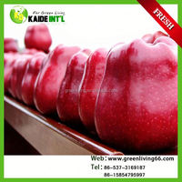 Fruit Market Price For Fresh Apple