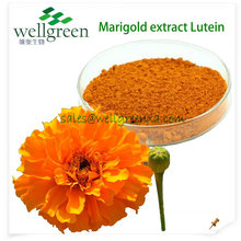 5% 10% 20% organic marigold flower extract lutein