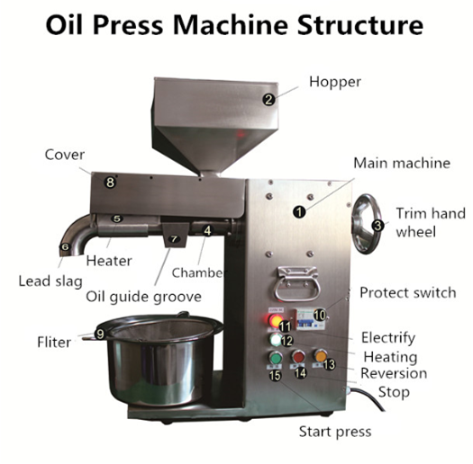 Economic and practical coconut oil press machine HJ-P30