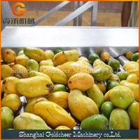 First rate factory price mango pulp making machines