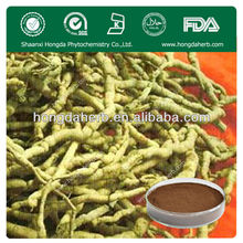 Factory Supply Radix Morindae Officinalis Extract 5:1