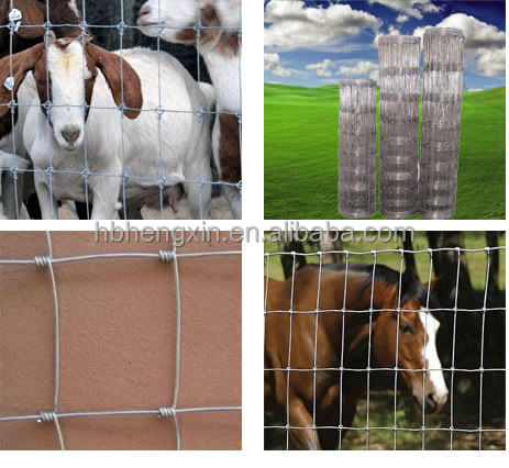 hot dipped galvanised metal goat/sheep/cattle fencing for sale