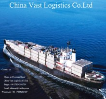 High competitive ocean /sea freight forwarder from china dalian ningbo shanghai shenzhen to Pakistan shipping rates.
