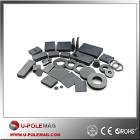 Industrial Magnet Ring/Block/Bar Special Shape Ferrite Magnet