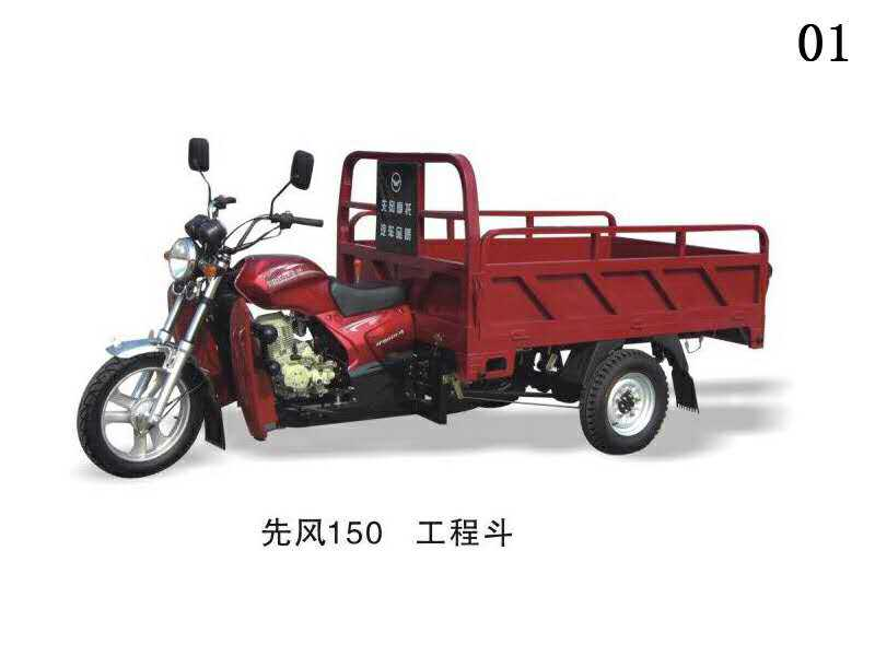 3 wheel truck/3 wheel passenger motorcycle/gas powered tricycle/125cc air box for Tnzania market