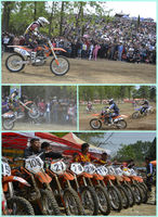 hot pit bike dirt bike race moto 2016 new hot sale