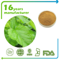 Pure Natural Mulberry leaf extract powder 10:1 TLC