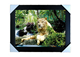 Free samples 3d lenticular photo frame with fierce animals for modern house
