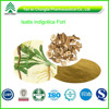 GMP Factory Supply Organic Radix Isatidis Extract Powder