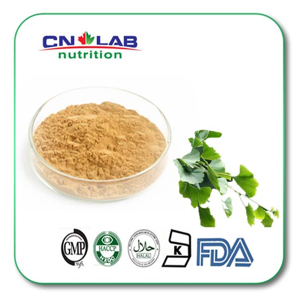 Natural Ginkgo biloba extract 24% flavones 6% ginkgolides Anti age anti oxidant