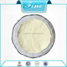 bodybuilding supplements protein powder for food additives