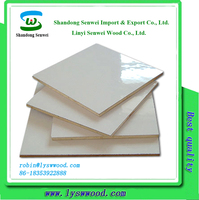 1220x2440mm Formica Plastic Laminate Sheets HPL Plywood to USA
