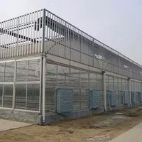 Hot Sale Agricultural Commercial Plastic Greenhouse