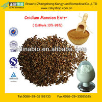 GMP Factory Supply Natural Cnidium Monnier Extract Osthole