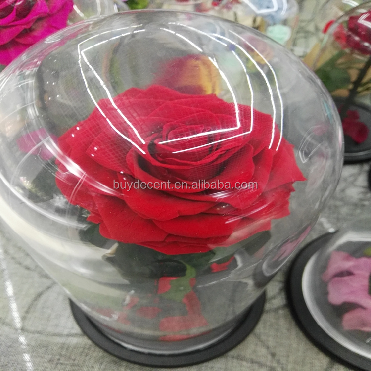Wholesale Unfade Long Lasting Real Fresh Preserved Roses Glass Dome Preservation Flower Wedding Decoration