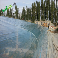 Polyethylene film greenhouse covering 200 micron,agricultural toughness film