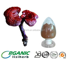 Famous factory red reishi mushroom extract