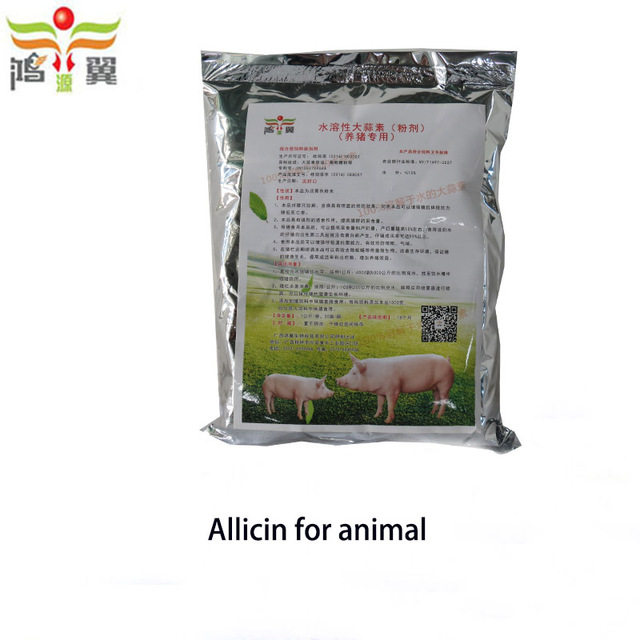 Fresh garlic knoflook extract allicine powder for the male and female chicken to growth become healthy and mating toy lay eggs