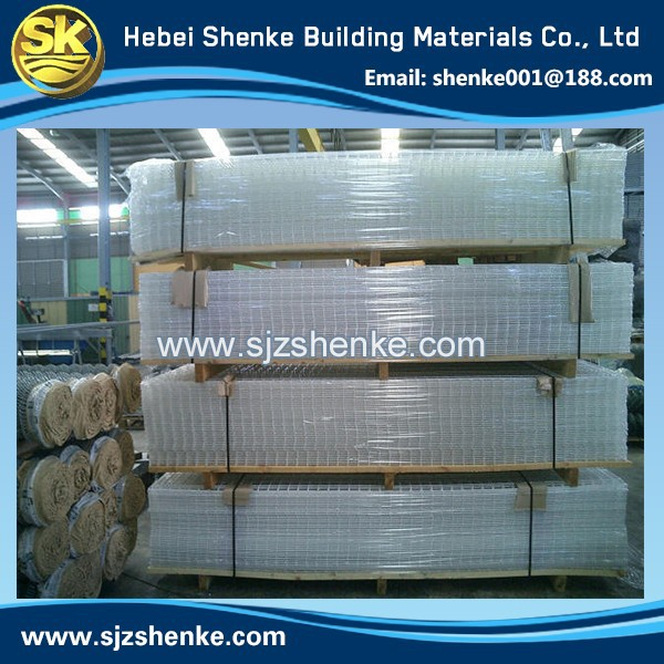 Professional China Hot 2X2 Galvanized Welded Wire Mesh For Fence Panel