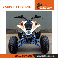 New 750W/1200W 48V 20Ah Adult Electric ATV for sale