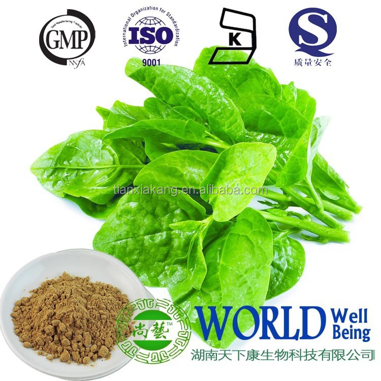 10:1 20:1 extract powder from Basella rubra L. leaf & seeds extract Basella alba Malabar spinach extract