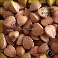 CHINA BUCKWHEAT, ROASTED BUCKWHEAT, CHINA ORGANIC RAW BITTER BUCKWHEAT KERNEL LOW PRICE