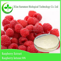 4% raspberry ketones fresh raspberry powder/raspberry seed extract