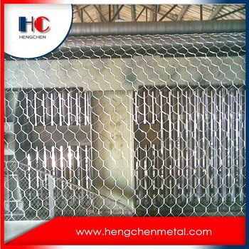 Hot Sale Galvanized Hexagonal Chicken Wire Mesh