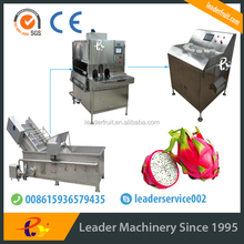 Leader pitaya pulp production line suitable for many fruits