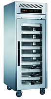 Vertical Deep Freezer In European / Stainless Steel Industrial Fridge