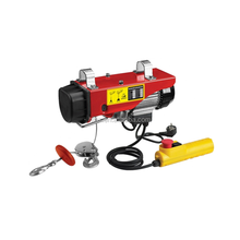Light weight PA200 electric hoist 220 Volt for sale, small electric hoist 110v for sale
