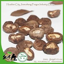 Best selling high edible value low prices china shiitake mushroom