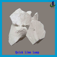 High Quality Quick Lime Lumps for Making Steel