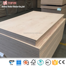 OEM for Global Famous Brand Multilayer Eucalyptus Sawn Wood Timber