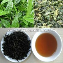 pure Oolong Tea Extract
