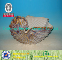 New style porcelain seashell craft and gift