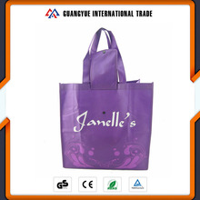 Guangyue Promotion Product Reusable Pp Laminated Foldable Non Woven Shopping Bag