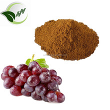 Natural Antioxidant Product Grape Seed Extract Powder Polyphenols