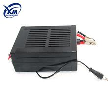 Professional Chinese Supplier Generator 12V 24V Automatic Battery Charger