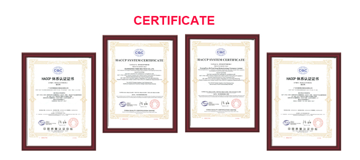 GMP/FSC Gecertificeerd Omega-3 Visolie Softgels (50/20) in Bulk