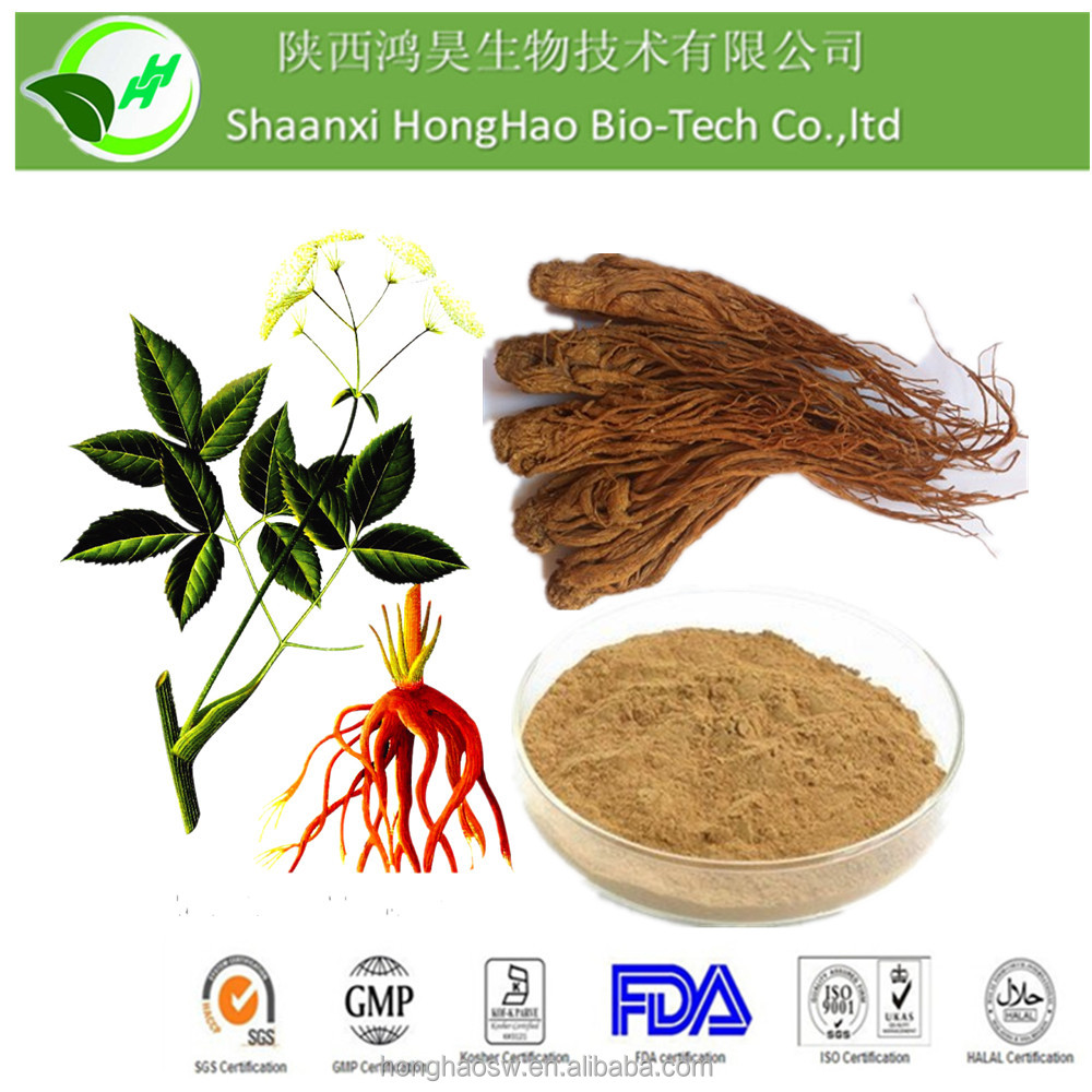 GHB Top Quality 100% Natural Chinese Angelica Extract