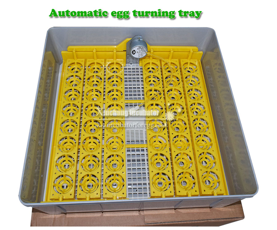 all kinds of chicken egg incubator 48 pcs mini egg incubator/poultry /chicken egg incubator hatcher