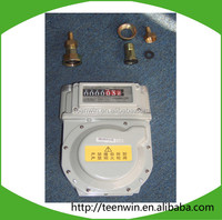 Teenwin high accuracy low cost biogas/natural gas flow meter