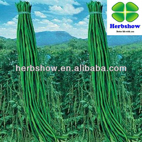 Vegetable seeds :Chinese Green long cowpea seeds