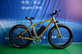 electric snow bike 36v 250w Snowing Styke